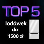 Jaka lodówka do 1500 zł? Top 5 najpopularniejszych lodówek!