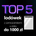 Jaka lodówka z zamrażalnikiem u dołu do 1000 zł? Top 5 modeli.