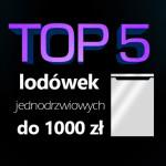 Jaka lodówka jednodrzwiowa do 1000 zł? Ranking 5 najlepszych modeli